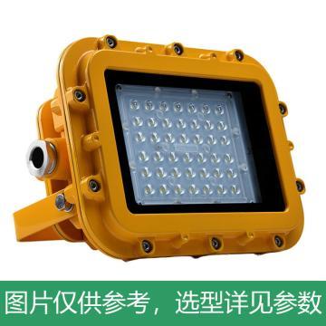 耀嵘照明 LED防爆泛光灯,70W,白光,YR-FB320-W70,含U型支架,单位:个