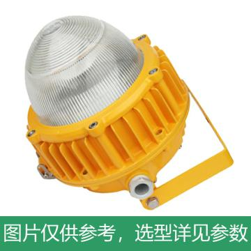 耀嵘照明 LED防爆平台灯,70W,白光,YR-FB318-W70,含U型支架,单位:个