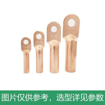 凤凰 堵油式铜接线端子(酸洗),DT-240,10个/包