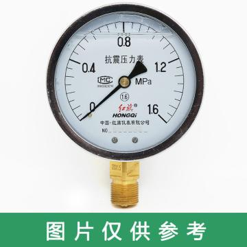 红旗 耐震压力表,YTN-100 碳钢+铜 径向不带边 M20×1.5 0~0.6MPa