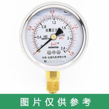 红旗 耐震压力表,YTN-60 碳钢+铜 径向不带边 M14×1.5 0~1.6MPa