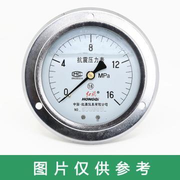 红旗 耐震压力表,YTN-100ZT 碳钢+铜 轴向带边 M20×1.5 0~2.5MPa