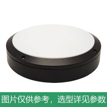 中跃 LED防水防尘吸顶灯,12W,白光,ZY9410-12W,Φ220*H70mm,单位:个