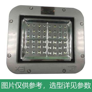 华荣 防爆投光灯,50W,RLEEXL615-XL50B,含U型支架,单位:个