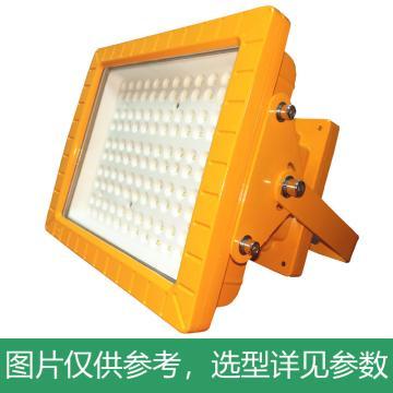 颇尔特 防爆LED投光灯 POETAA611-L240W 支架安装,单位:个