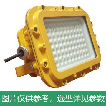 颇尔特 防爆LED投光灯 POETAA611-L60W,单位:个