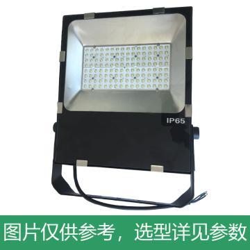 颇尔特 LED投光工作灯 POETAA717-L100W 支架安装,单位:个