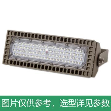 颇尔特 LED三防投光灯 POETAA715-L75W 支架安装,单位:个