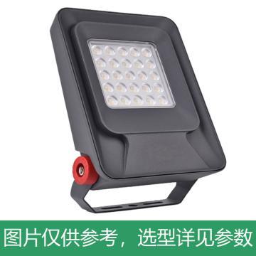颇尔特 LED射树投光灯 POETAA700-L20W 支架安装,单位:个