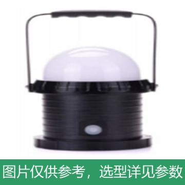 亿嘉 轻便装卸灯,10W,白光,YJ6330,单位:个