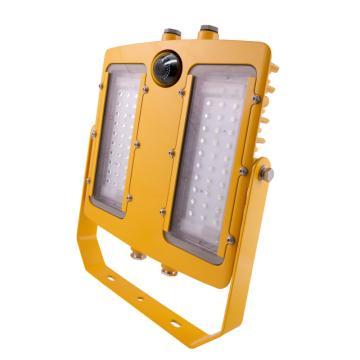 晶全照明 防爆泛光灯,BJQ8118A,200W,白光,配海康威视摄像头,含U型支架,单位:套