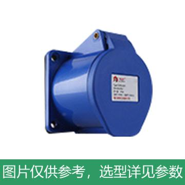德力西DELIXI 工业暗装插座 DEP2-313,DHADEP2313U,16A 3芯 250V