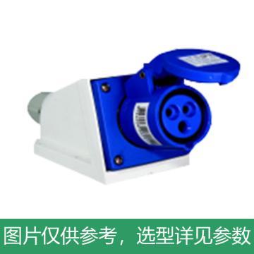 德力西DELIXI 工业明装插座 DEP2-113,DHADEP2113U,16A 3芯 250V