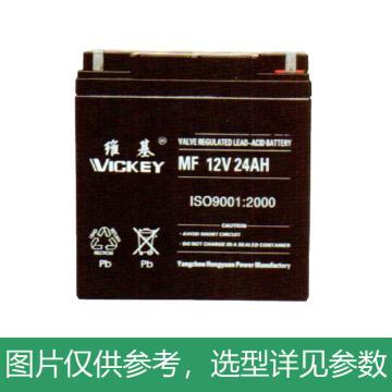 维基 蓄电池,6-GFM-24,12V/24AH,165*125*175mm