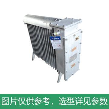 三正 RB-2000/127(A)电热取暖器