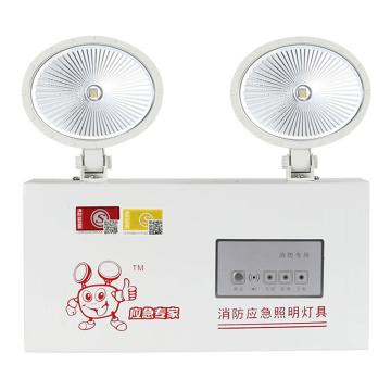 深照紫光 LED照明灯,2×2W,白光,GX9012,单位:套