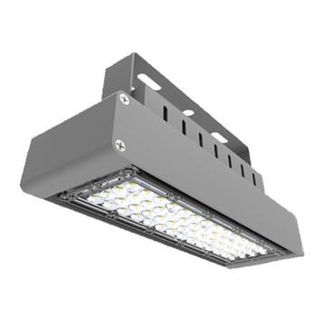 勤上源光 LED低顶泛光灯 9182A,LED 120W 白光5000K,单位:个