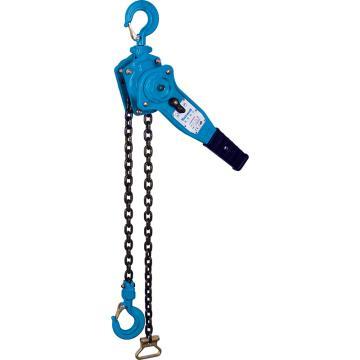 Raxwell 手扳葫芦,0.75t*1.5m,链条数1,RLCL0001