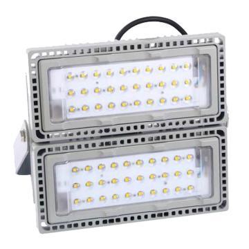 辰希照明 LED隧道灯,50W,黄光,LCXF9706,单模组,含U型支架,单位:套