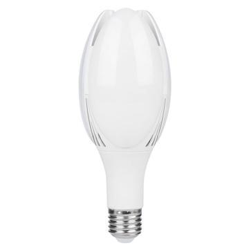 红壹佰 LED灯泡 小玉兰庭院灯泡 50W 白光 E27,S2系列,单位:个