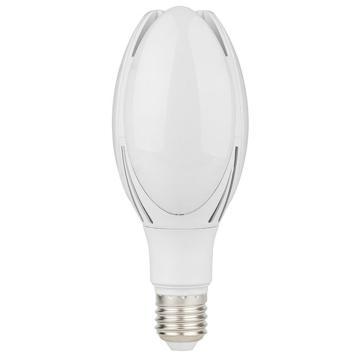 红壹佰 LED灯泡 小玉兰庭院灯泡 30W 白光 E27,S2系列,单位:个