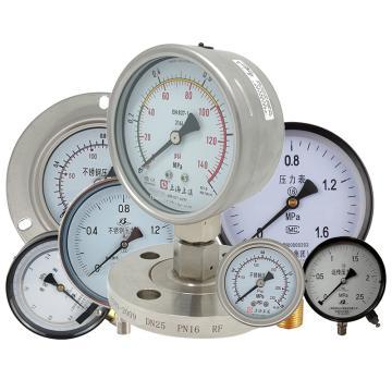 上仪 耐震压力表Y-103BFZ,304不锈钢+304不锈钢,轴向前带边,Φ100,0~6.0MPa,M20*1.5,硅油