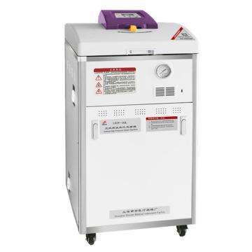 申安 F系列75立升立式高压蒸汽灭菌器,手动排气,灭菌温度范围:50-134 ℃,LDZF-75L(新)