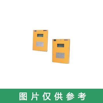 永瑞仪表 矿用隔爆兼本安型超声波流量计,LCZ1000/600G 外贴式