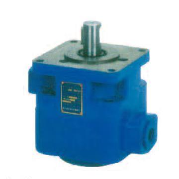 泰兴达力 叶片泵,YB1-6