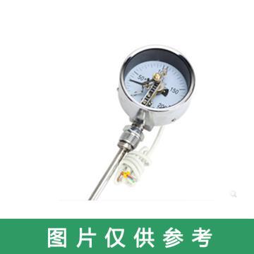 雷尔达 双金属温度计, WSSX-401 411