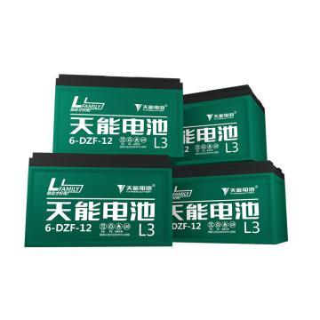 天能 电动车电池电瓶车电池铅酸电池两轮车电池,L3系列48v12ah(4只/箱)(不含安装)