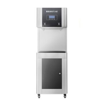 德玛仕 直饮机商用,不锈钢直饮水机,一开一温,YT-2K-2HY(RO五级过滤)