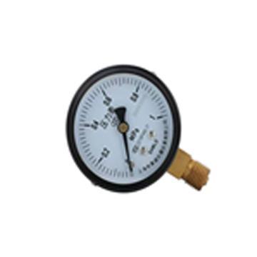 布莱迪 压力表, Y-60/0-0.6MPa/1.6级