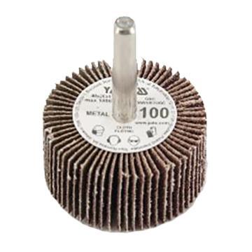 易尔拓 带柄千叶轮,100#,A40×B20×C6×D30,18000PRM,1个