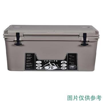 威佳 冷藏箱,45L、灰色、LLDPE/PU,WGTB6845